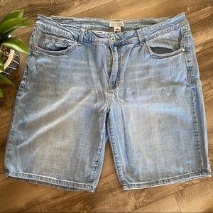 Judy Blue denim jean shorts 3X